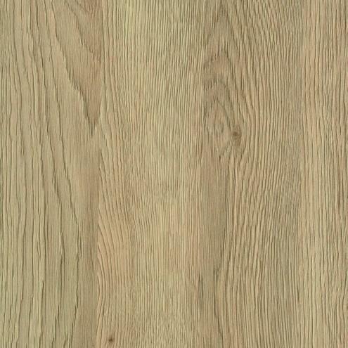 LTD / H3309 dub gladstone pískový
