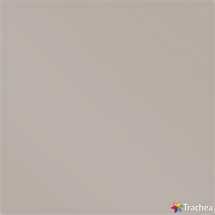 GLAXX / GL021M písková šedá mat