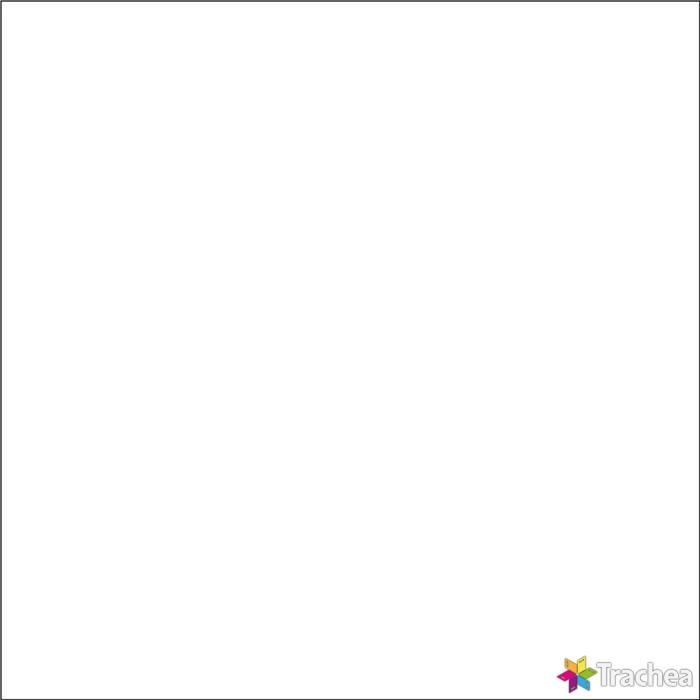 FENIXX / XF032 bílá mat