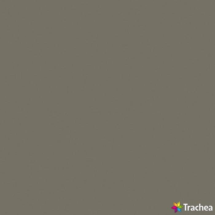 FENIXX / XF174 béžová mat